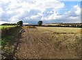 SK6506 : Fields by Beeby Road by Andrew Tatlow