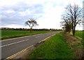 TL1644 : Hill Lane eastwards by Andrew Tatlow