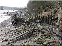 NZ1465 : Remains of steam drifter, Ryton riverside by Andrew Curtis