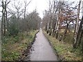 SU9946 : Shalford: Former LB&SCR Horsham & Guildford Line by Nigel Cox