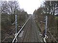 SJ6496 : Railway running east from Broseley Bridge by JThomas