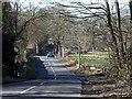SK3357 : Approaching Lea down Lea Moor Road by Andrew Hill