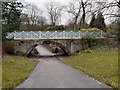 SD9303 : Lovers' Walk and the Rustic Bridge, Alexandra Park by David Dixon