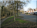 SP0364 : Woodberrow Lane, Crabbs Cross, Redditch B97 by Robin Stott