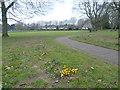 TQ3064 : Mellows Park by Marathon