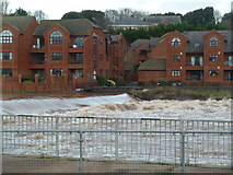 SX9291 : Trews Weir, exeter by Chris Allen