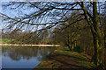 SP0583 : The dam at Edgbaston Pool by Phil Champion