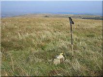 SN7110 : Mynydd Uchaf by Rude Health