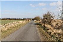 TF0258 : Green Man Lane facing east by J.Hannan-Briggs