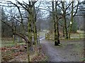 SK6670 : Walesby Forest footpath by Andrew Hill