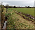 SO6800 : Drainage channel on the SW side of Station Road north of Berkeley by Jaggery