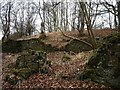 NO1322 : Ruined walls by James Allan