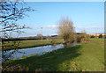 SU5374 : River Pang at Everington House by Des Blenkinsopp