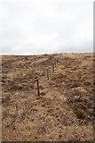 NR3268 : Old Boundary Line on Maol Bun an Uillt, Islay by Becky Williamson