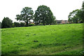 SP3276 : Chideock Hill open space, Coventry CV3 by Robin Stott