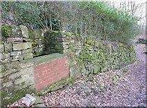 SE0721 : Trough on Cat Lane by Humphrey Bolton
