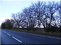 TM4070 : A12 Main Road & the footpath to The Street by Adrian Cable