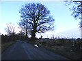 TM4170 : The Street & the footpath to the A12 Main Road by Adrian Cable