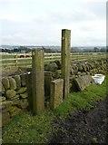 SE0721 : Stile into Clegg Lane at Far Turbury by Humphrey Bolton