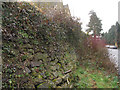 TQ4053 : Bulging churchyard wall by Stephen Craven