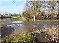 SU3380 : The Mile End Stream at Foxbury Farm by Des Blenkinsopp