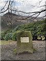 SE0204 : Matthew Whitson Memorial, Ashway Gap by David Dixon