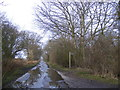 TM4468 : Walkbarn Farm Lane & the footpath to Raceground House & Westleton Road by Adrian Cable