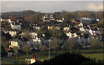 SX9065 : Leafy suburbia, Torquay by Derek Harper