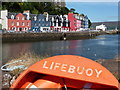 NM5055 : Tobermory: lifebuoy at the marine by Chris Downer