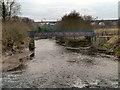 SD7907 : Footbridge Across the Irwell by David Dixon