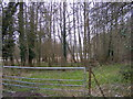TM4268 : Wood entrance off Fenstreet Road by Adrian Cable