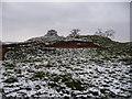 SO4013 : Rabbit burrows in Penrhos Castle motte by Jeremy Bolwell