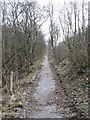 NY2129 : The permissive path beside the A66 by David Purchase