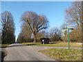 SU7490 : Green Sign & Bus Shelter by Des Blenkinsopp