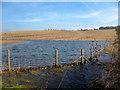 SU3976 : The Shefford Stream by Des Blenkinsopp