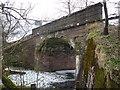 NS4355 : Rural East Renfrewshire : Tannoch Road Railway Bridge, Uplawmoor Station by Richard West