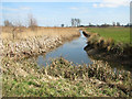 TM4591 : Drainage ditch by the River Waveney, Worlingham by Evelyn Simak