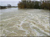 TL1197 : River Nene at Water Newton Mill by Alan Murray-Rust