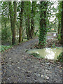 TL1396 : Site of Alwalton Mill by Alan Murray-Rust