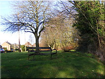 TM3864 : Seat off Carlton Road by Adrian Cable