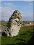 SU1242 : Stonehenge: the Heel Stone by Chris Downer