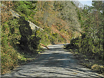 SN7079 : Forestry track above Dôl-fawr by Nigel Brown