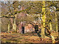 SJ7387 : Slaughterhouse, Dunham Massey by David Dixon