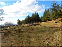 NM4256 : Track junction, Glengorm estate by Gordon Hatton