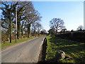 TQ1240 : Horsham Road, Forest Green by David Howard