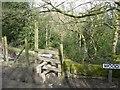 SD9926 : Stile off Wood Hey Lane, Mytholmroyd by Humphrey Bolton