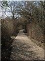 TQ1415 : North Lane by Simon Carey