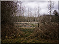 SU3168 : Gate into scrubland by Gillie Rhodes
