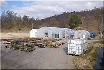NH3214 : Tree nursery, Dundreggan by Craig Wallace
