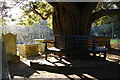 TQ4464 : Farnborough, St Giles the Abbot: yew tree and bench in the churchyard by Christopher Hilton